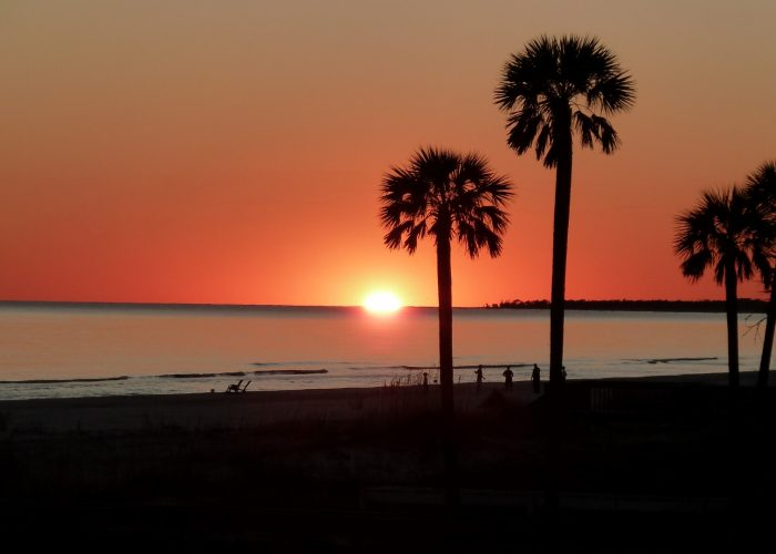 Two Palms Sunset