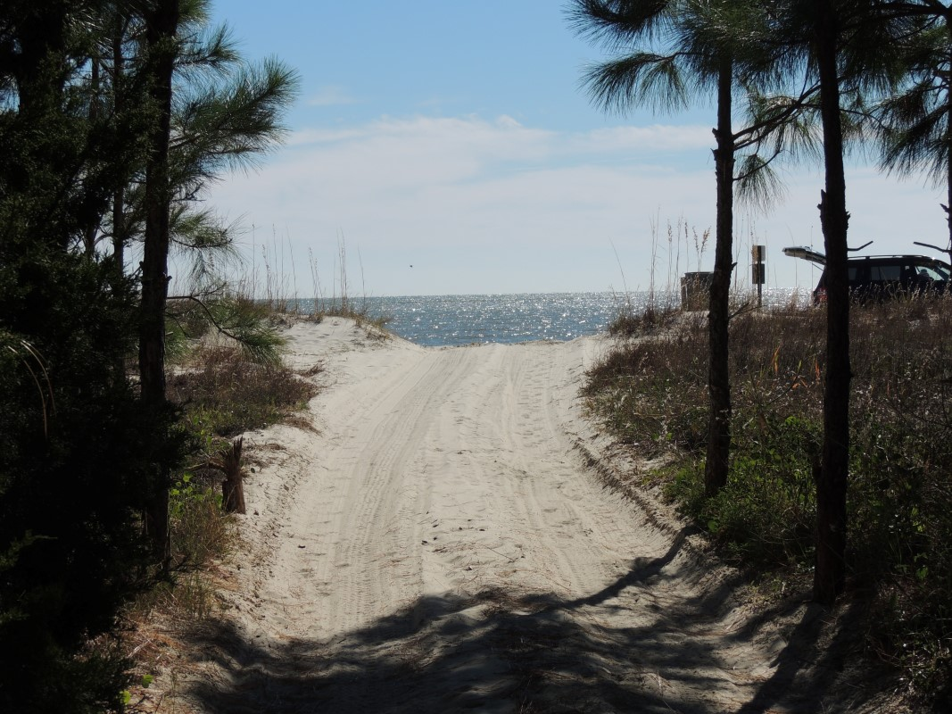 Three Palms Beach Path-Almost there-11