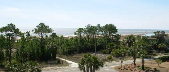 Three Palms Panoramic View of Beach and Gulf of Mexico