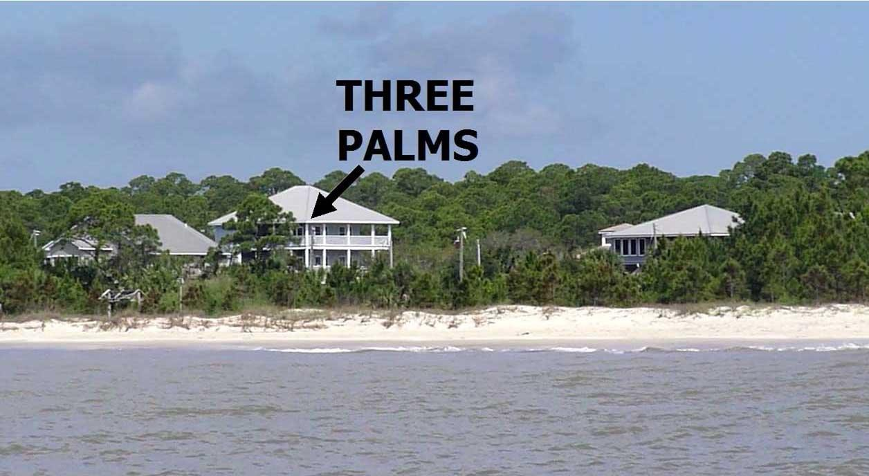 Three Palms From Gulf of Mexico
