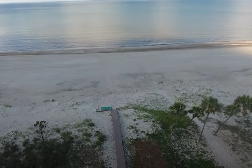Drone Top of two palms looking at Gulf and Beach