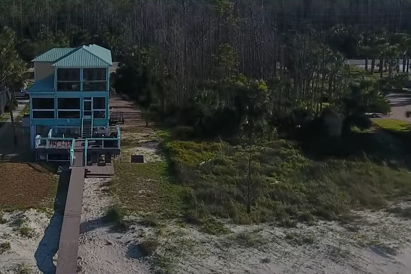 two-palms-from-HUGE-beach-dronealms - from-HUGE-beach-drone