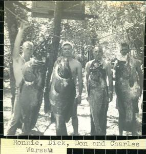 Giant Fish Caught off Cape San Blas-Circa 1960's
